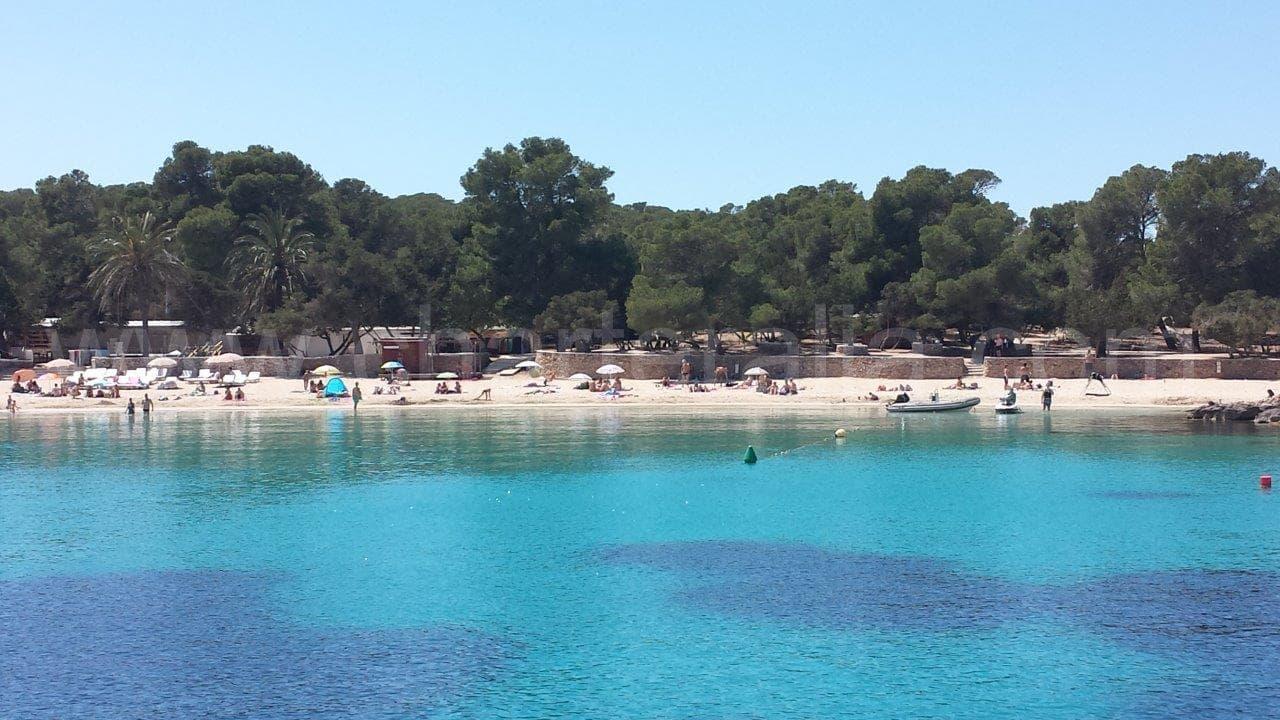 Cala Bassa Ibiza by boat