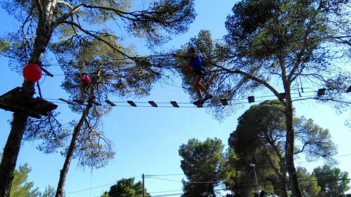 Adventurous treetop hopping in Ibiza