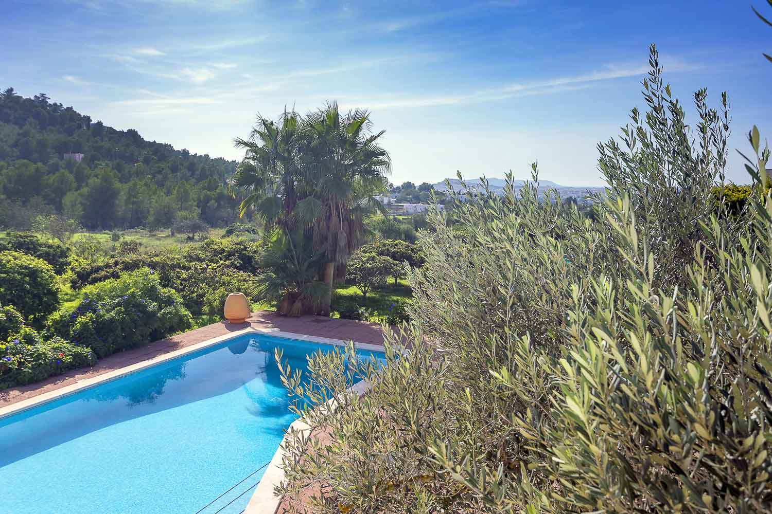 View of the stunning natural landscape from the terrace and also the swimming pool