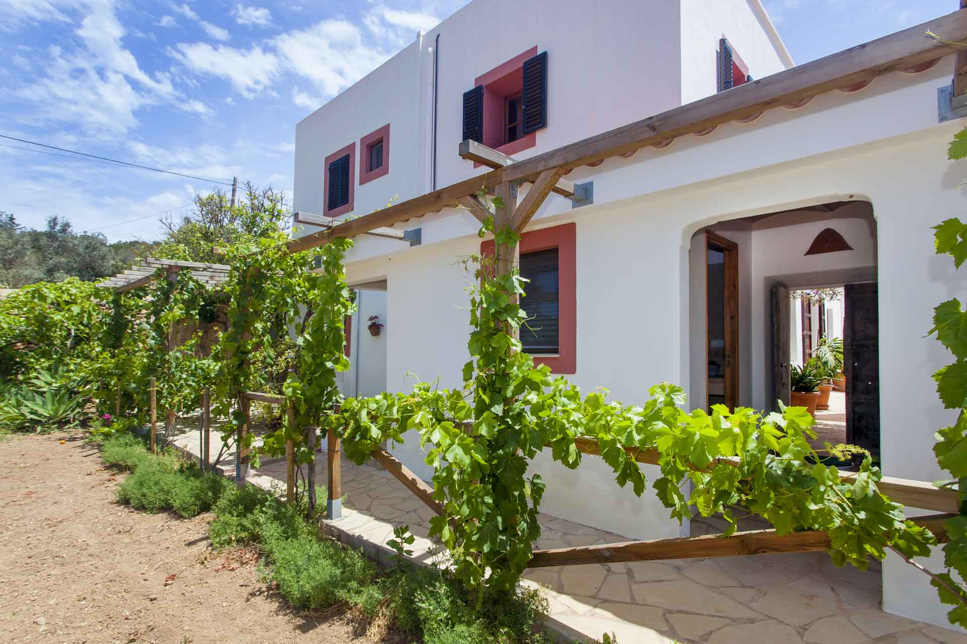 general view of a rental house with vineyard in ibiza